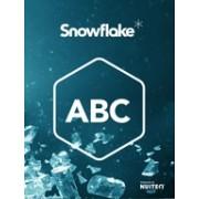 SnowFlake - ABC (набор мультитач-приложений для развития детей)